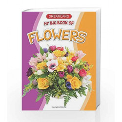 My Big Book of Flowers by Dreamland Publications Book-9781730110368