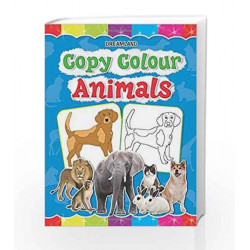 Copy Colour: Animals (Copy Colour Books) by Dreamland Publications Book-9781730174414